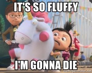 its-so-fluffy-im-gonna-die